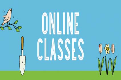 first Year ONline Class